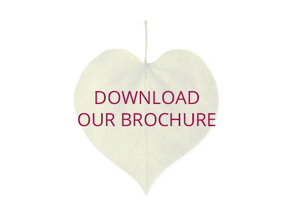 BROCHURE DOWNLOAD ROLLOVER